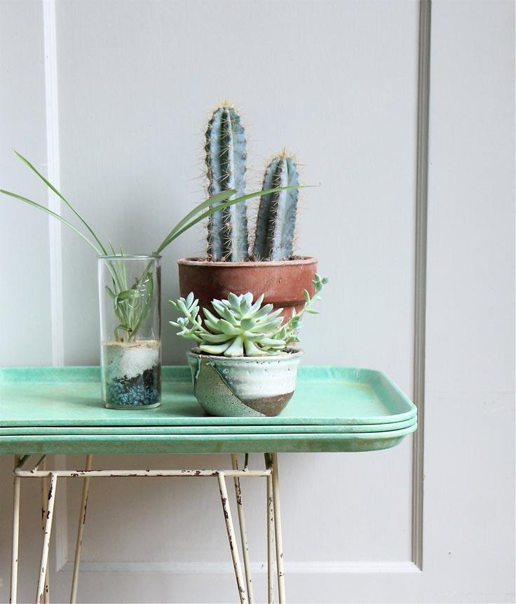 11x creatief met cactussen interior junkie bloglovin for Interior junkie