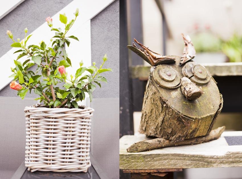 Op het balkon laat Michael met trots de plant zien waar hij goed voor gezorgd heeft, en dat is te zien,  want hij bloeit nogsteeds!