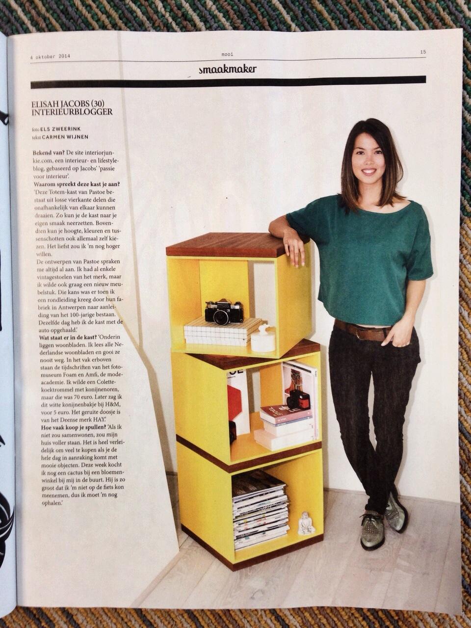 Interior Junkie x Volkskrant Magazine