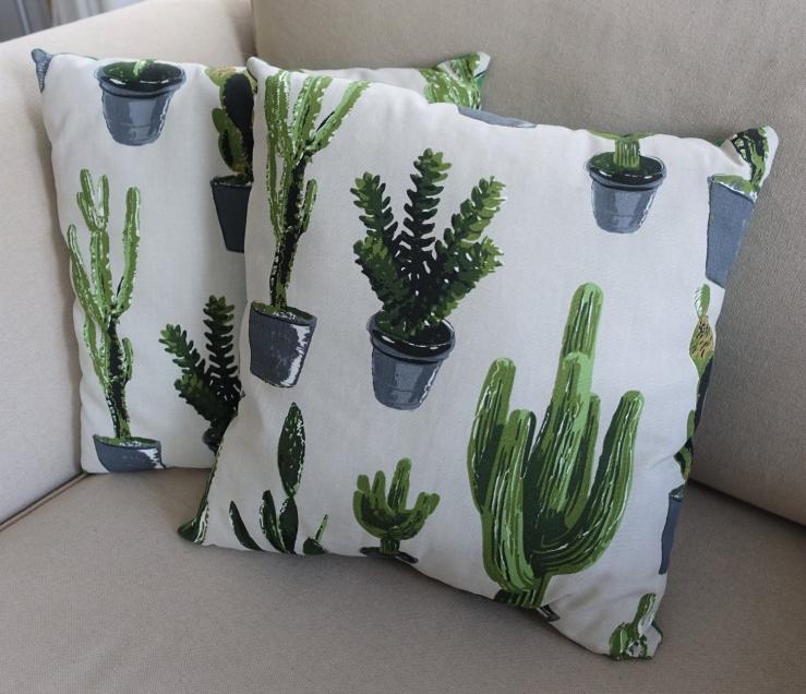 Sierkussens - cactus