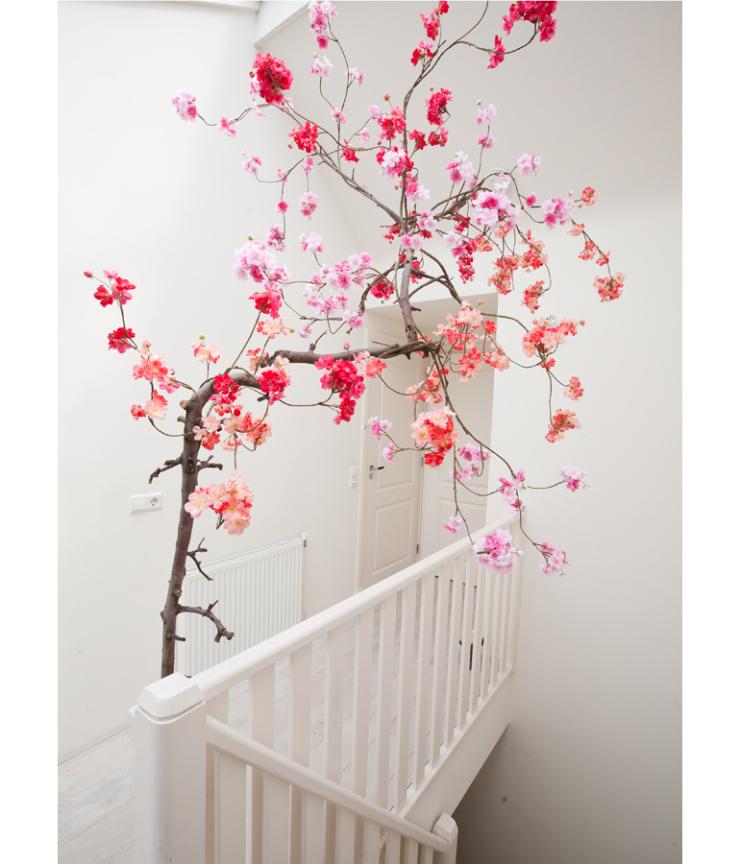 De bloesemboom in huis is terug van weggeweest